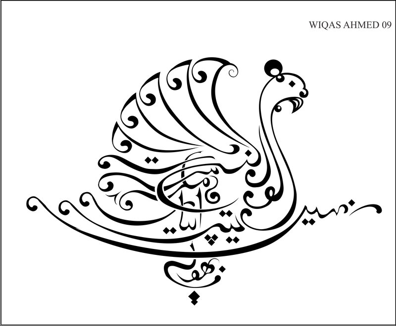 Calligraphy Drawings